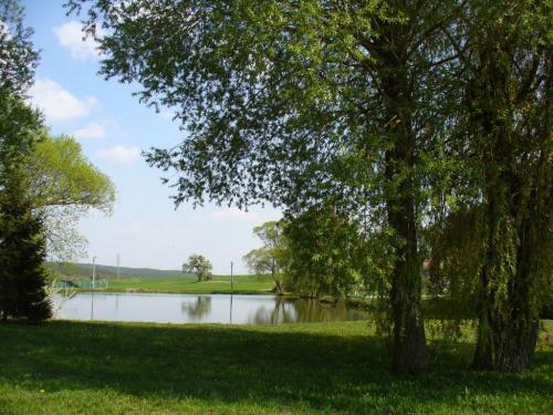 Tlucná rybník